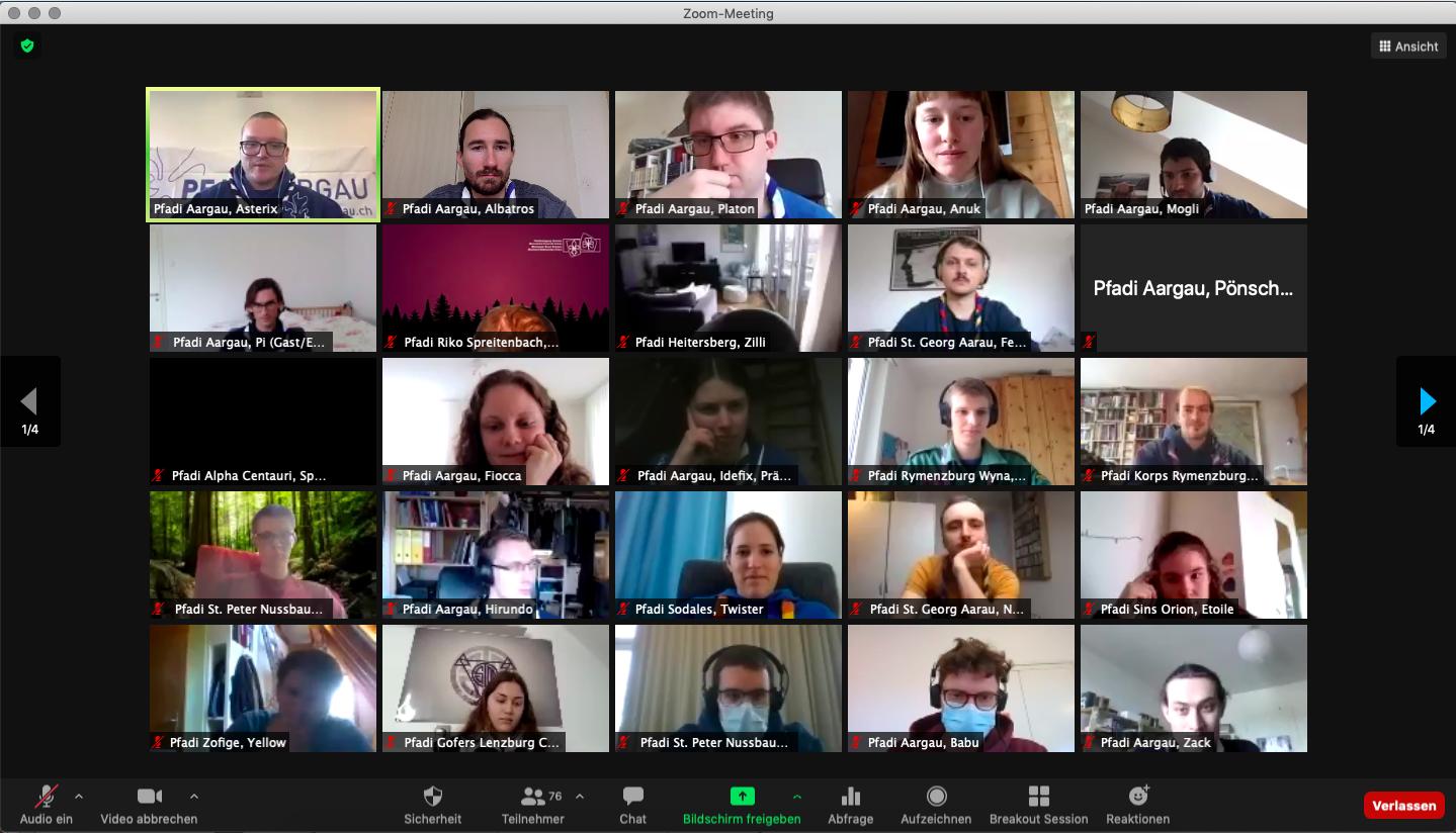 Einige Teilnehmende der Videokonferenz